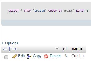 fungsi rand untuk mengacak data dengan mysql