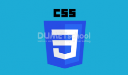 Cara Menggunakan Property Selection CSS