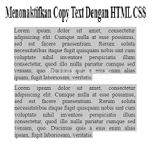 Cara Non Aktif Copy Text Pada Website